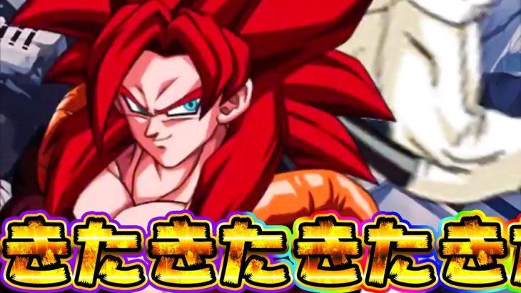 【ドッカンバトル】このゲーム2体目のゴジータ4がきたきたきたきたー性能と演出を見てみた【Dragon Ball Z Dokkan Battle】