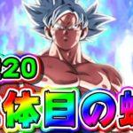 【ドッカンバトル】身勝手の極意 2体目の虹を作ったよ!回避Lv.20で神次元ロード【Dragon Ball Z Dokkan Battle】