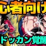 ドッカンバトル【超#794】初心者向け!簡単に勝てる編成を紹介したい!【Dragon Ball Z Dokkan Battle】