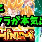 【ドッカンバトル】新ステージにポタラカテゴリで挑戦!バトルロード【Dragon Ball Z Dokkan Battle】