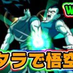 【ドッカンバトル】ポタラの本気の本気が見れる悟空伝【Dragon Ball Z Dokkan Battle】