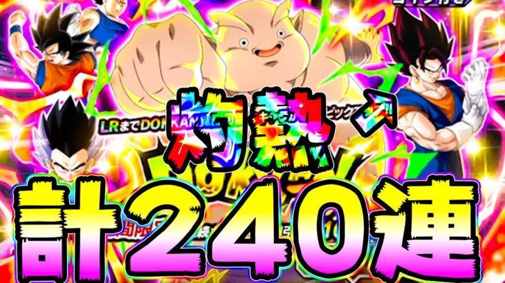 【ドッカンバトル】こっちも120連 ジャネンバ狙いの年末Wドッカンフェス【Dragon Ball Z Dokkan Battle】
