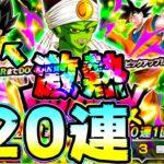 【ドッカンバトル】ピックアップ激熱!個人的には激寒!パイクーさんを狙って120連ガチャ【Dragon Ball Z Dokkan Battle】