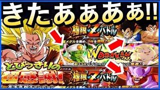 【ドッカンバトル】やっべぇサプライズ!!年末『いっぱい』お知らせきたぁぁぁぁーー!!【Dragon Ball Z Dokkan Battle】【地球育ちのげるし】