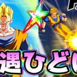 【ドッカンバトル】虹ってリンク激上げ未来悟飯を使ってみた【Dragon Ball Z Dokkan Battle】