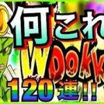 【ドッカンバトル】『確率が異常?』年末Wフェス『パイクーハン』開幕120連!!【Dragon Ball Z Dokkan Battle】【地球育ちのげるし】
