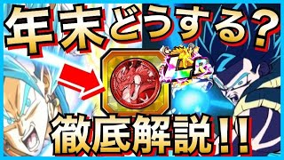 【ドッカンバトル】年末Wフェスで『フェスコイン』使うべきか?『4つ』の◯◯な理由を徹底解説!!【Dragon Ball Z Dokkan Battle】【地球育ちのげるし】