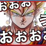 【ドッカンバトル】1000連超えたしもう出るんじゃね??『すぐガシャ編成』+『あと1枚で虹ガシャ』年末Wフェス【Dragon Ball Z Dokkan Battle】【地球育ちのげるし】
