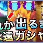 【ドッカンバトル】『3つ』の『神確定演出』どれか出るまで『一生ガシャ』やってみた!!年末Wフェス【Dragon Ball Z Dokkan Battle】【地球育ちのげるし】