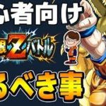 【ドッカン超#916】平成最後の解説動画!極限Zバトル完全攻略!【Dragon Ball Z Dokkan Battle】