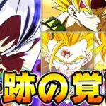 【ドッカンバトル】奇跡の覚醒を楽しむ6周年 身勝手が虹になったよ!【Dragon Ball Z Dokkan Battle】