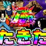 【ドッカンバトル】6周年 頂伝説降臨のLRは17号達!!うおおおお!【Dragon Ball Z Dokkan Battle】