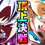 【ドッカンバトル】これがドッカンの頂点!最強第7宇宙VS最強かめはめ波【Dragon Ball Z Dokkan Battle】