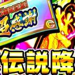 【ドッカンバトル】超感謝チケットで頂伝説降臨を引いてみたら…!!【Dragon Ball Z Dokkan Battle】