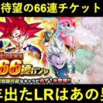 【ドッカンバトル】行くぜ!待ちに待ったLR確定66連LR確定チケットガシャ!今年のLR確定枠は…?
