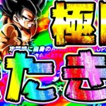 【ドッカンバトル】極限LR悟空&フリーザの性能きたきたきたー!!【Dragon Ball Z Dokkan Battle】