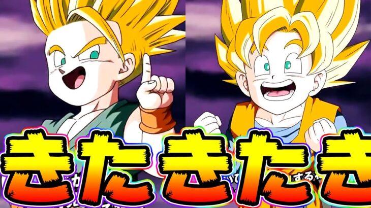 【ドッカンバトル】新フェス限 トランクス&悟天きたー!性能を見てみましょう!【Dragon Ball Z Dokkan Battle】