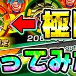 【ドッカンバトル】極限LR ブロリーのハイパー無双がやばすぎる【Dragon Ball Z Dokkan Battle】