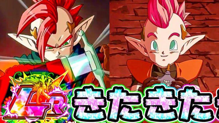 【ドッカンバトル】運営側の挑戦⁉次の伝説降臨LRはタピオン&ミノシア【Dragon Ball Z Dokkan Battle】