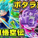 【ドッカンバトル】悟空伝でポタラVSポタラ【Dragon Ball Z Dokkan Battle】
