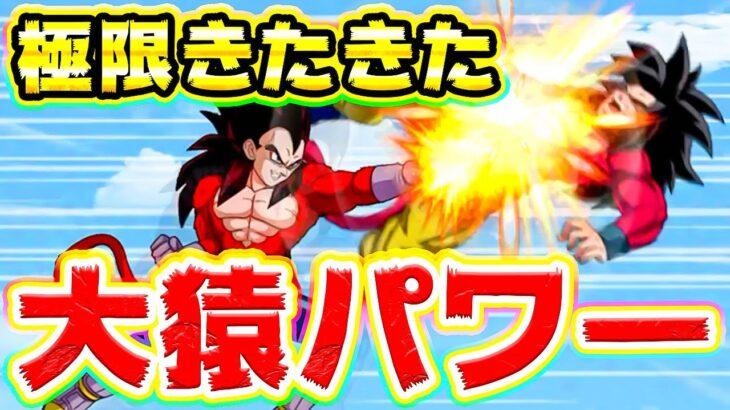 【ドッカンバトル】2周年コンビの極限性能きたきたーからの大猿パワーでGT悟空伝【Dragon Ball Z Dokkan Battle】