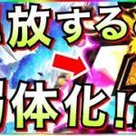 【ドッカンバトル】99.9%の人が解放してるけど『潜在解放しない方がいいLR』徹底解説!!【Dragon Ball Z Dokkan Battle】【地球育ちのげるし】