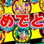 【ドッカンバトル】ベジータさん憧れのかめはめ波チームに加入【Dragon Ball Z Dokkan Battle】
