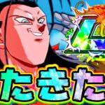 【ドッカンバトル】伝説降臨 新LRの超17号がパッシブモンスター【Dragon Ball Z Dokkan Battle】