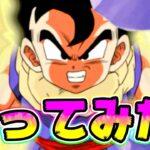 【ドッカンバトル】フェス限悟飯ちゃんを使ってみた!DEFはすごいよ…【Dragon Ball Z Dokkan Battle】