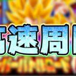 【ドッカンバトル】速さこそ絶対!バトルロード新ステージを高速周回してみた【Dragon Ball Z Dokkan Battle】