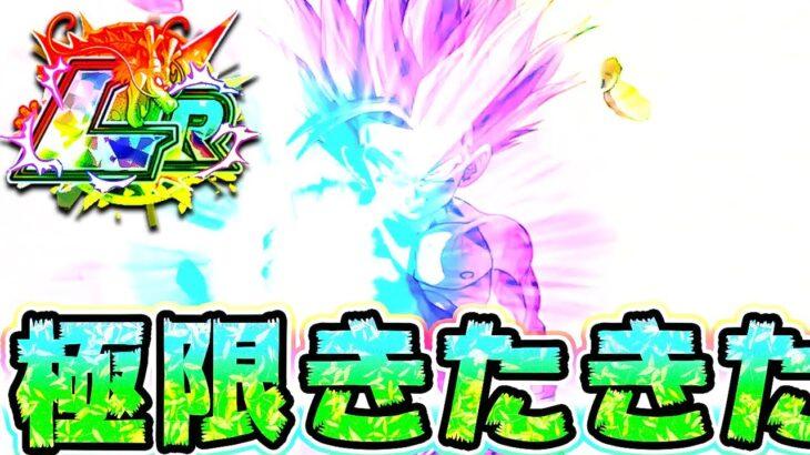 【ドッカンバトル】祝極限!ズンズン悟飯ちゃんがウォーミングアップを始めました【Dragon Ball Z Dokkan Battle】
