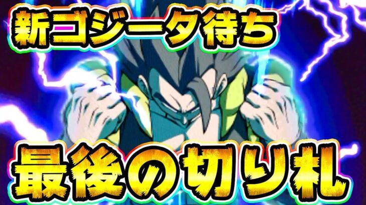 【ドッカンバトル】新ゴジータ加入直前!最後の切り札がウォーミングアップを始めました【Dragon Ball Z Dokkan Battle】