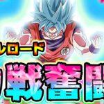 【ドッカンバトル】力戦奮闘でバトルロード リンクガタガタ【Dragon Ball Z Dokkan Battle】