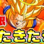 【ドッカンバトル】極限の性能が発表された悟空3天使がウォーミングアップをはじめました【Dragon Ball Z Dokkan Battle】