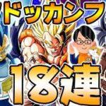 【ドッカンバトル】5年越しの悲劇!?七夕ドッカンフェス18連|Dragon Ball Z Dokkan Battle|ソニオTV