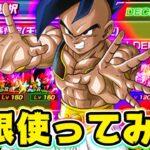 【ドッカンバトル】極限スーパーウーブ&LRウーブを一緒に使ってみた【Dragon Ball Z Dokkan Battle】
