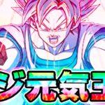 【ドッカンバトル】界王拳ブルーの元気玉をベジータ伝で使ったら凄いことになった【Dragon Ball Z Dokkan Battle】