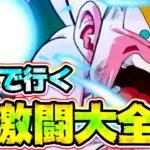【ドッカンバトル】最強になった超サイヤンカテゴリで超激闘大全に行ってみた【Dragon Ball Z Dokkan Battle】