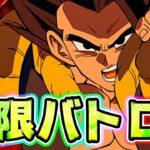 【ドッカンバトル】極限バトロも余裕だってとこを見せてやりたい【Dragon Ball Z Dokkan Battle】