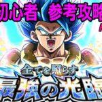 【ドッカンバトル】ゲーム実況  初心者 超激戦 最強の光臨 Rank20 攻略【Dragon Ball Z Dokkan Battle】