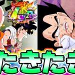 【ドッカンバトル】次の頂伝説降臨のLRクリ悟飯とベジータ/悟空の性能きたきたきたー【Dragon Ball Z Dokkan Battle】
