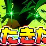 【ドッカンバトル】フェス限カリフラ&ケールきたきたー!性能を見てみよう【Dragon Ball Z Dokkan Battle】