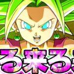 【ドッカンバトル】次のフェスはケフラ!ピチピチギャルがウォーミングアップをはじめました【Dragon Ball Z Dokkan Battle】