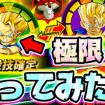 【ドッカンバトル】イベント産の極限キャベを使ってみた【Dragon Ball Z Dokkan Battle】
